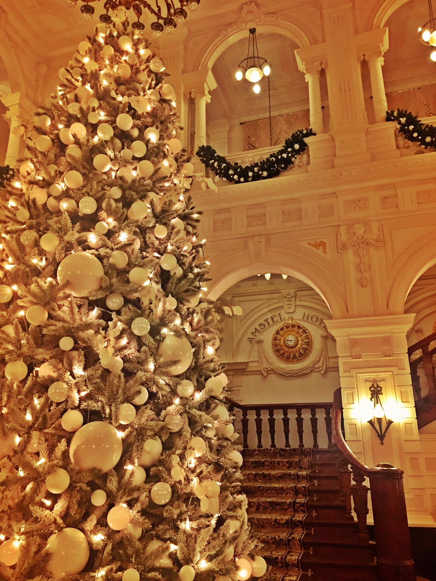 Christmas Tree Amstel.jpg